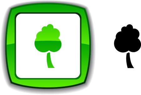 tree   realistic button. Vector illustration.  Stock Vector - 6155051