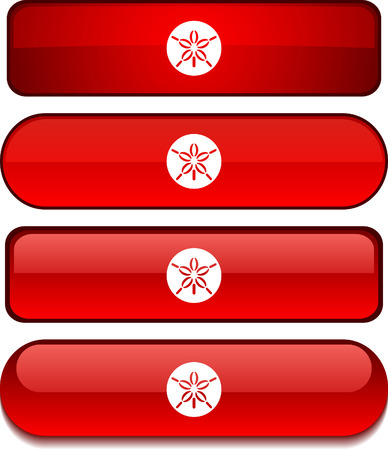 sand dollar: Botones de web de d�lar de arena. Ilustraci�n vectorial.