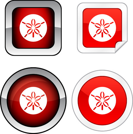 sand dollar:  Sand dollar  web buttons. Vector illustration.  Illustration
