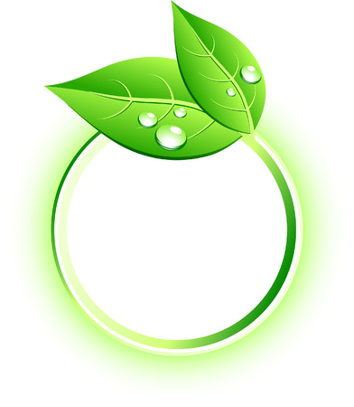 icono ecologico: Icono de la hermosa ecol�gica. Ilustraci�n vectorial.