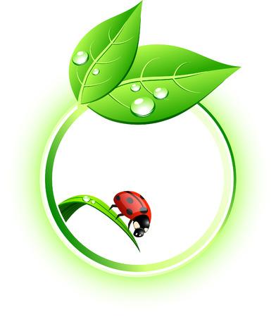 life green: Beautiful eco icon. Vector illustration. Illustration
