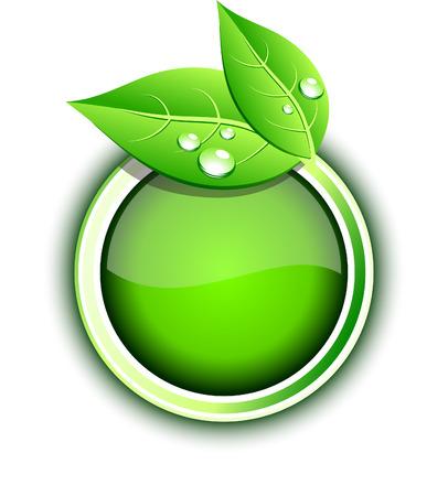Beautiful eco icon. Vector illustration. Stock Vector - 6424894