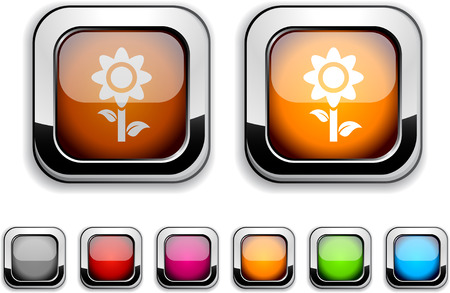 Flower realistic icons. Empty buttons included.  Vector