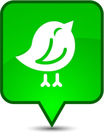 tweet balloon: Bird  glossy speech square icon.  Illustration