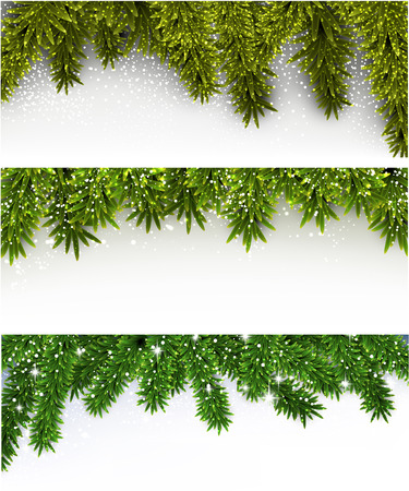 horizontal banner: Winter abstract horizontal banners with spruce twigs.