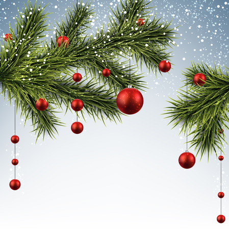 Winter background with spruce branches and red baubles. Christmas vector illustration.    Vector