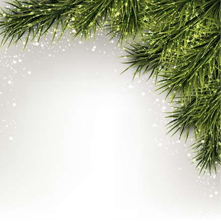 bight: Winter abstract background with spruce twigs. Christmas vector frame. Eps10.