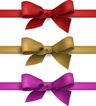 Set of colorful satin bows. Vector ribbons for gift.  Vector
