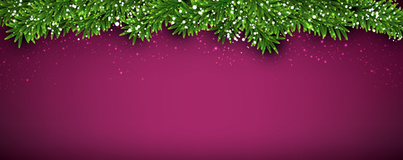 green banner: Winter abstract background with spruce twigs. Christmas vector wallpaper Illustration