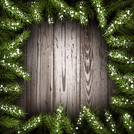 timbered: Wooden background with fir branches.