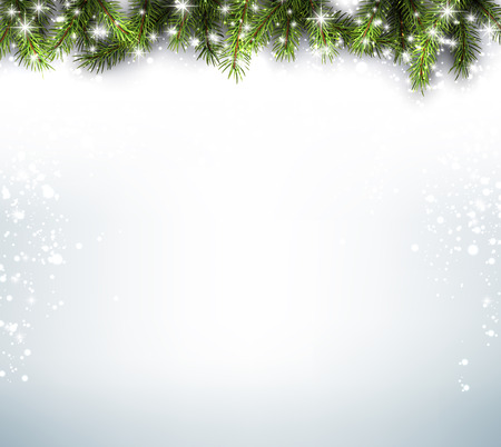 Winter background with fir branches.
