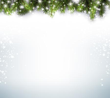 겨울 배경과 전나무 분기합니다.