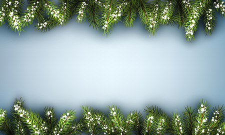 felicitation: Winter background with fir branches.
