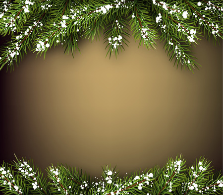 winter background: Winter background with fir branches.