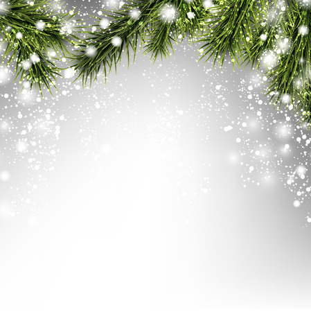 winter holiday: Winter xmas background with fir branches.