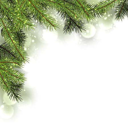 전나무 지사와 함께 겨울 카드. 벡터 종이 그림.