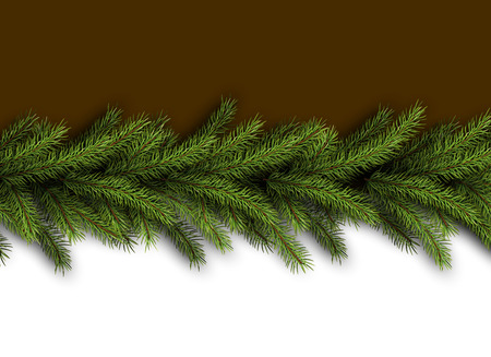 ard: Сard with fir branches. Vector paper illustration. Illustration