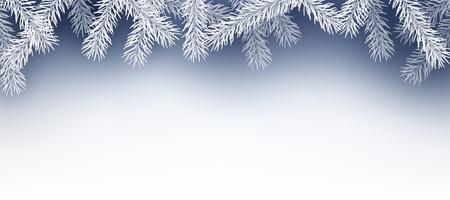 abetos: Fondo del invierno con ramas de abeto. Vector de papel ilustración. Vectores