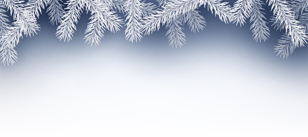 firs: Winter background with fir branches. Vector paper illustration.