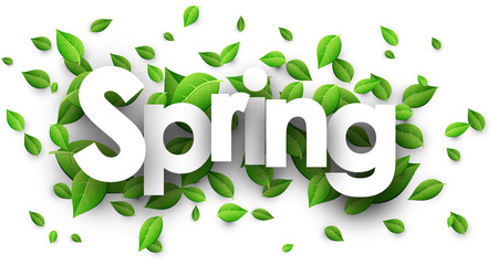 Spring paper banner with fresh green leaves. Vector illustration.