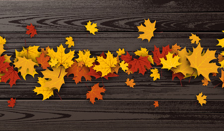 strip structure: Wooden texture autumn background with golden maple leaves. Vector illustration.