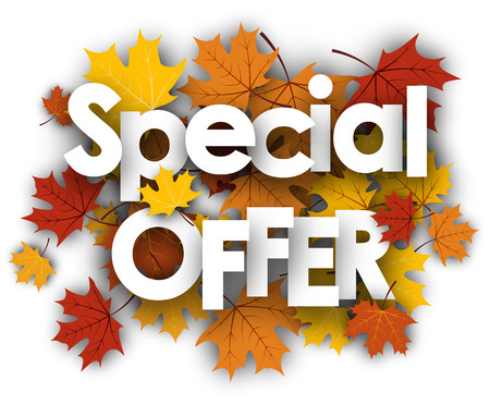 special offer: Special offer white background with golden maple leaves. Vector illustration.