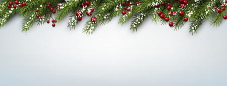 christmas banner: Christmas banner with fir branches and holly berries. Vector illustration. Illustration
