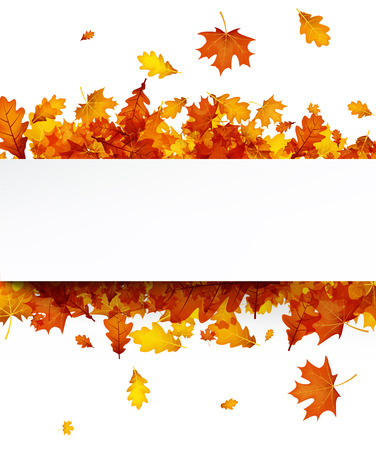 Autumn background with golden maple and oak leaves. Vector paper illustration. Stock Illustratie
