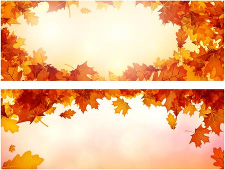 Lichtend herfstbanner met gouden esdoorn en eiken bladeren. Vector illustratie.