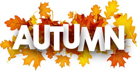 Herfstbanner met esdoorn en eikenbladeren. Vector papier illustratie.