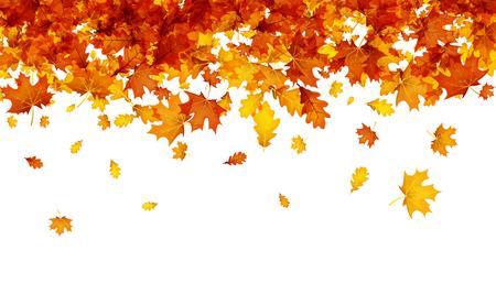 Herfst achtergrond met gouden esdoorn en eikenbladeren. Vector papier illustratie. Stock Illustratie