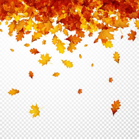 Herfst achtergrond met gouden esdoorn en eikenbladeren. Vector papier illustratie. Stockfoto - 84858147