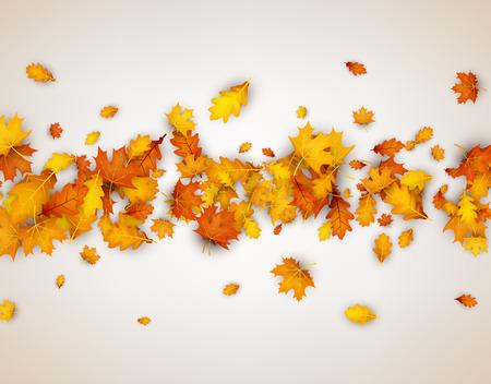 Herfstbladeren banner.