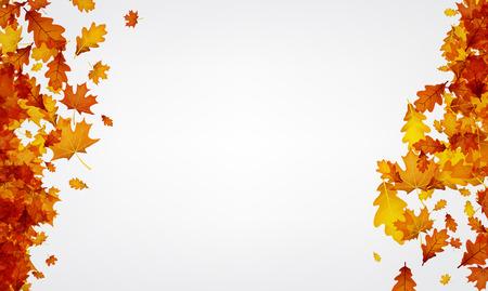 Gouden esdoorn en eikenbladeren banner.