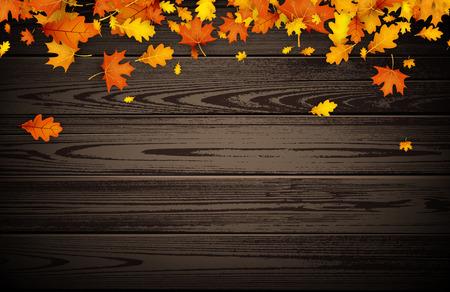 Gouden esdoorn en eikenbladerenillustratie.