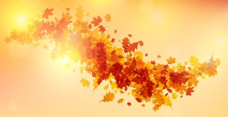 Glanzende herfst achtergrond met esdoorn en eikenbladeren. Vector illustratie. Stockfoto - 84990237
