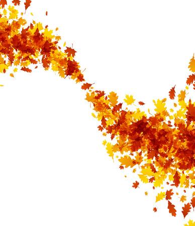De herfstachtergrond met roes van esdoorn en eiken bladeren. Vector illustratie. Stockfoto - 84990247