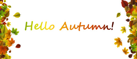 Witte hello herfst banner met kleurrijke bladeren. Vector papier illustratie. Stock Illustratie