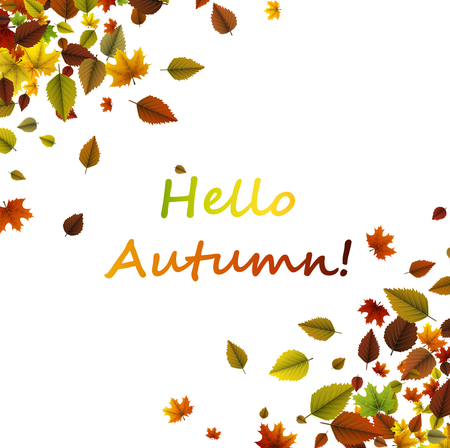 White hello autumn card with colorful leaves. Vector paper illustration. Illustration