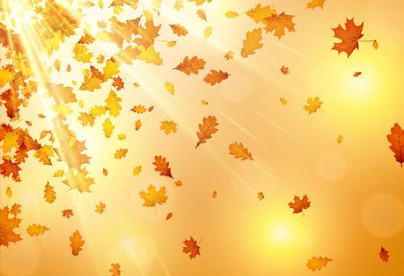 Glanzende herfst achtergrond met gouden esdoorn en eiken vallende bladeren. Vector illustratie.