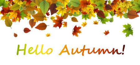 Weiß hallo Herbstfahne mit bunten Blättern. Standard-Bild - 85318994