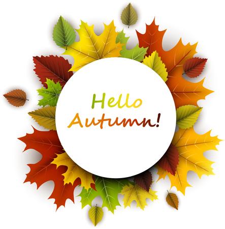 Witte hello herfst kaart met kleurrijke esdoorn en berken bladeren.