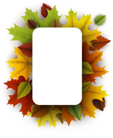 Herfst rechthoekig met kleurrijke esdoorn en berkenbladeren.