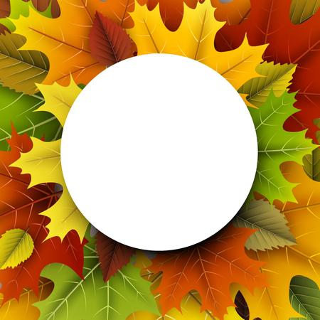 Herfst rond met kleurrijke esdoorn en berkenbladeren.