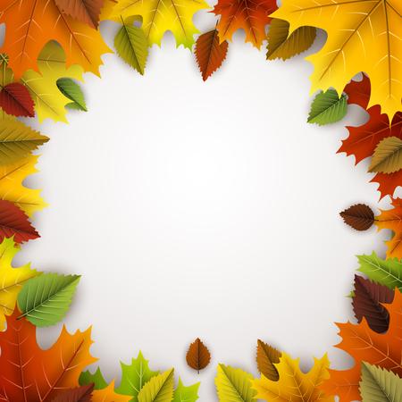 Herfst vierkant met kleurrijke esdoorn en berken bladeren.