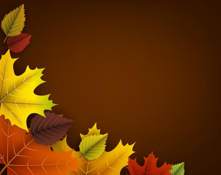 Herfst oker met kleurrijke esdoorn en berken bladeren.