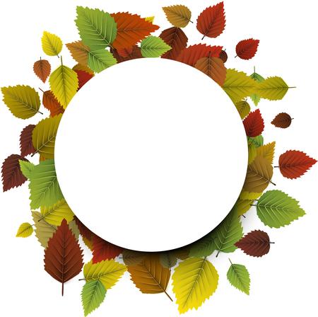 Herfst rond met kleurrijke berkenbladeren. Stock Illustratie