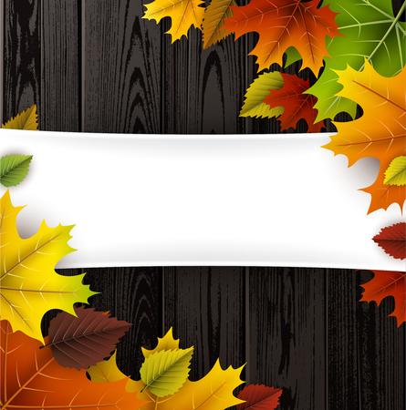 Herfst houten met kleurrijke bladeren. Stockfoto - 85422455