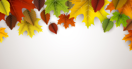 Autumn with colorful maple and birch leaves. Illustration