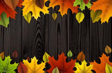 Herfst houten met kleurrijke bladeren.